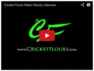 Interview with Cricket Flours