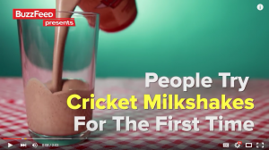 Buzzfeed Cricket Milkshake