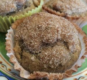 Cricket Flour Muffins