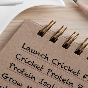 Cricket-Flour-Home