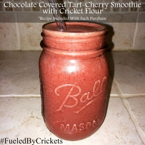 Smoothie with Cricket Flour