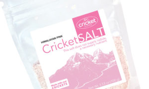 Cricket Flour Recipes