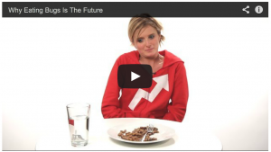 The future of eating bugs