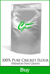 Cricket Flour for Sale