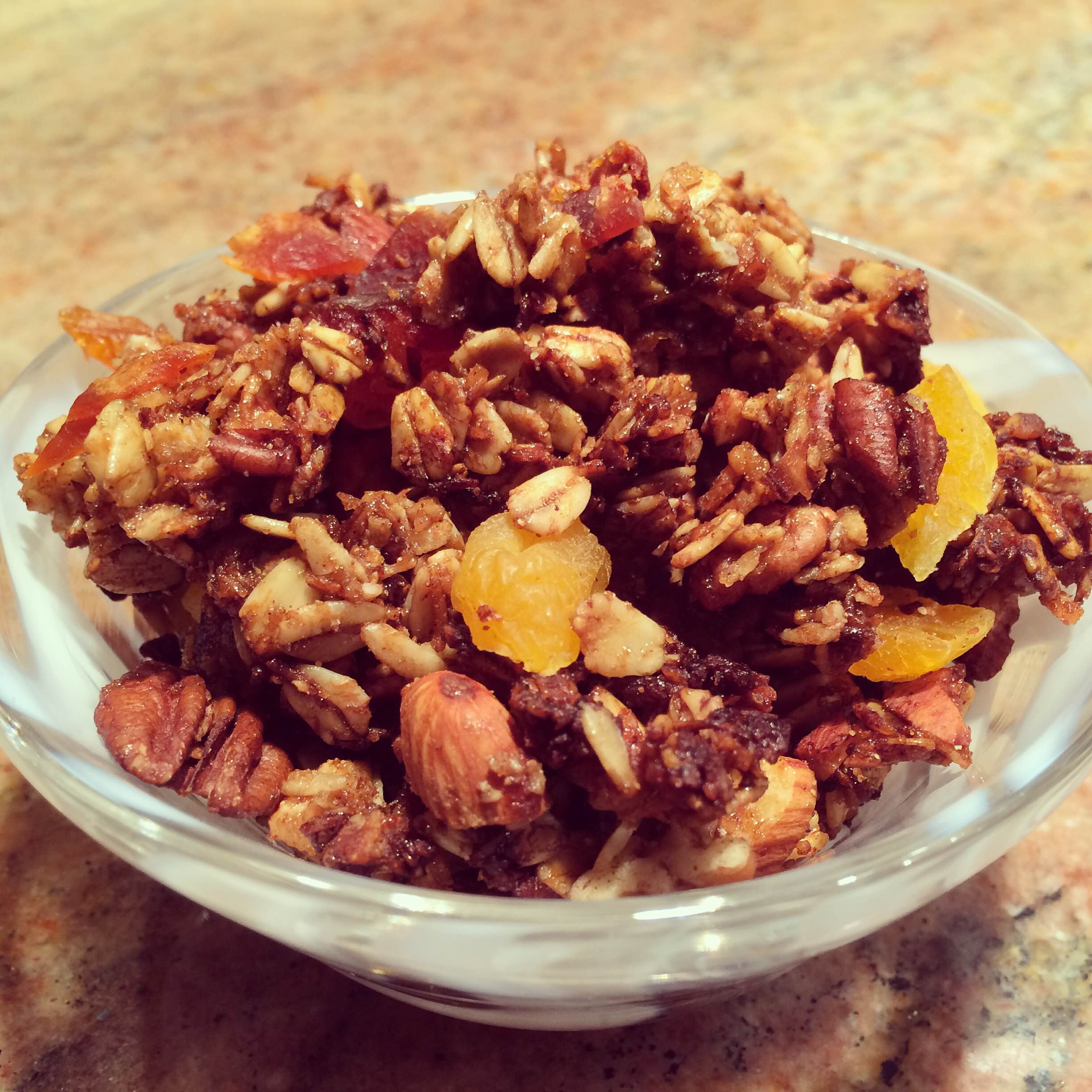 Spiced Granola with Cricket Protein