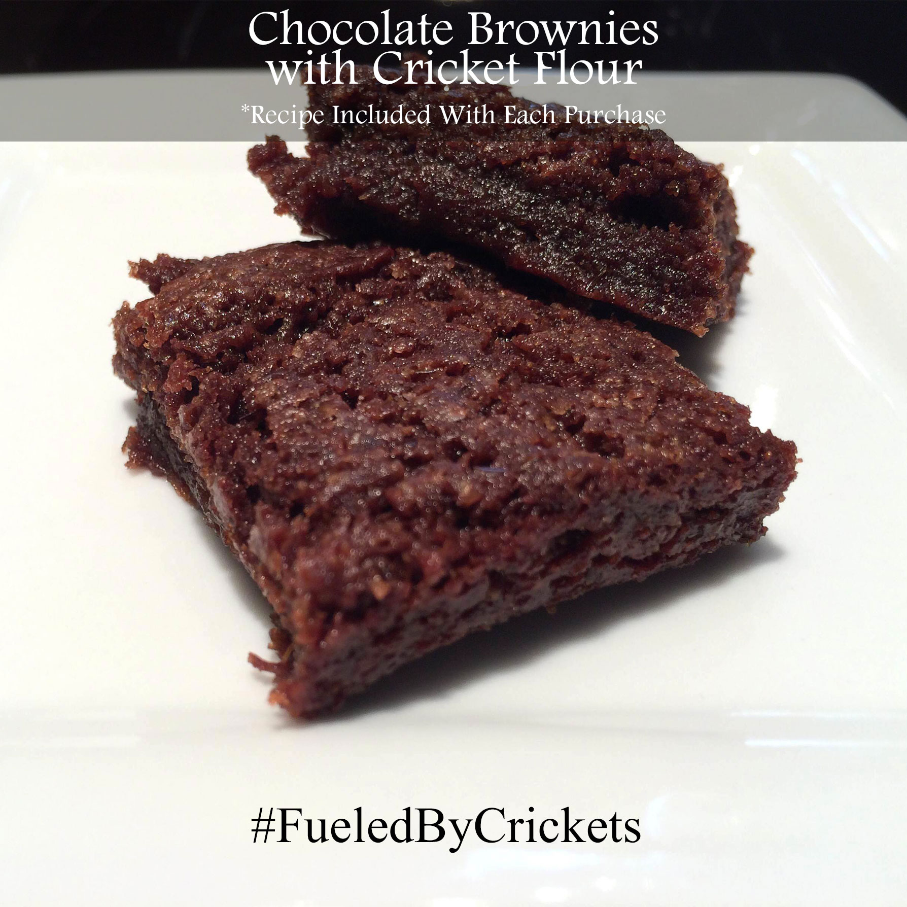 Brownies with Cricket Flour