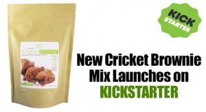 Cricket Brownie Mix
