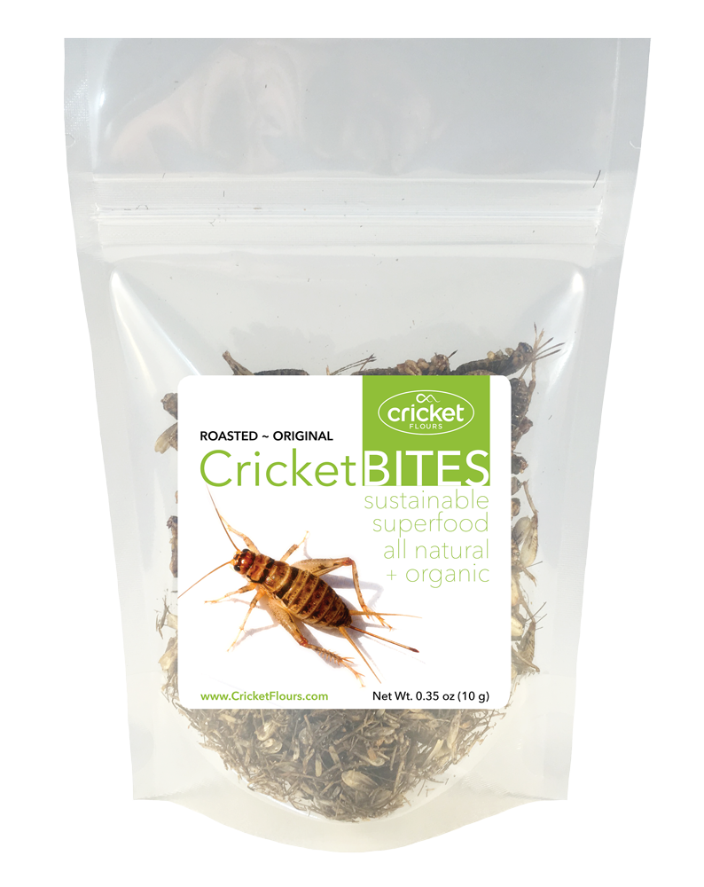 Roasted Crickets & Dried Crickets