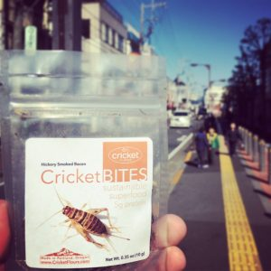 Japan Edible Insects