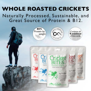 Chitin Edible Insect Protein