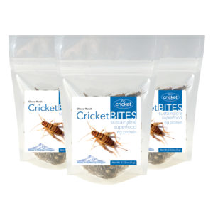 Roasted Cricket Bites Made in Portland Oregon