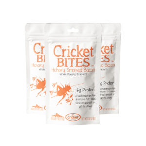 Edible Insects to Eat
