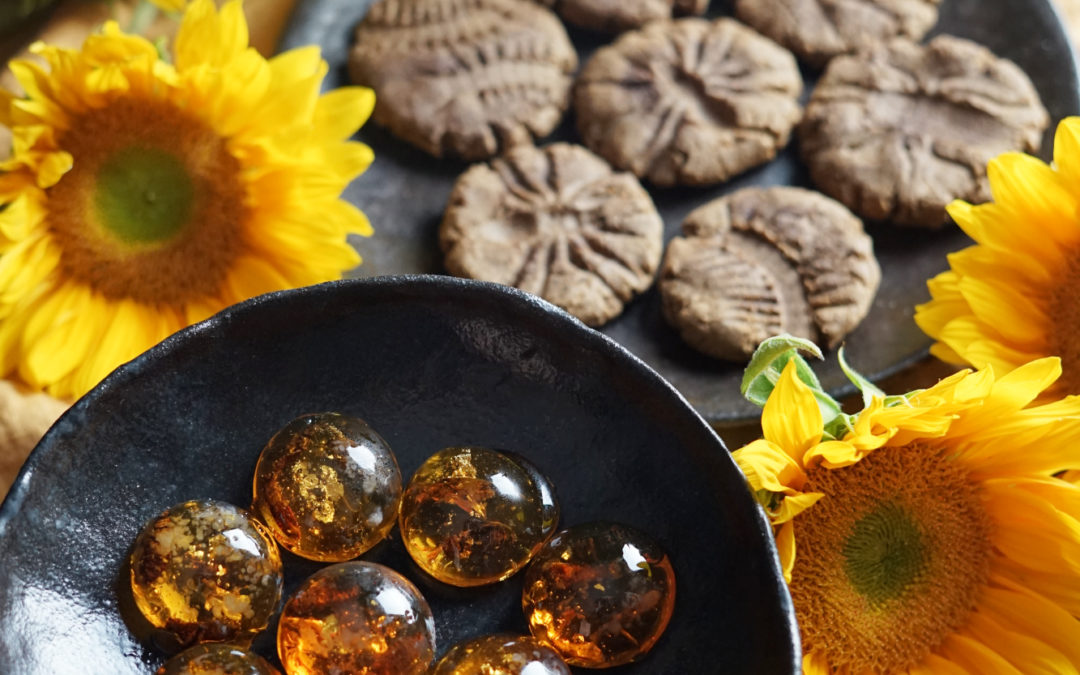 Amber Candy and Fossil Cookies: The Evolutionary Dance of Entomophagy