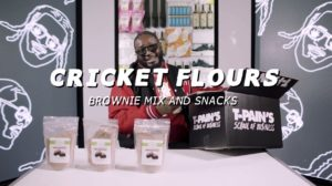 Edible Insects and T-Pain at Complexcon