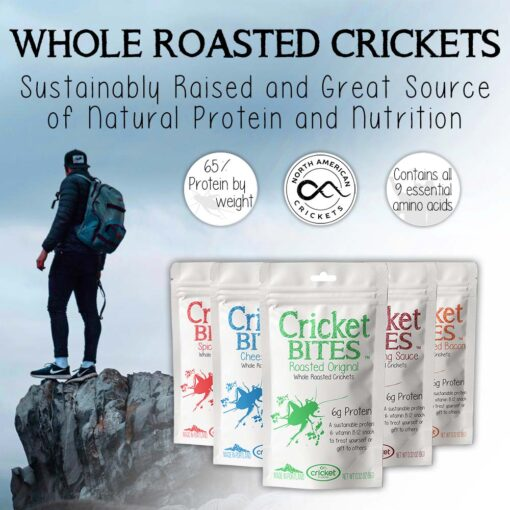 Eat Whole Roasted Crickets and Bugs