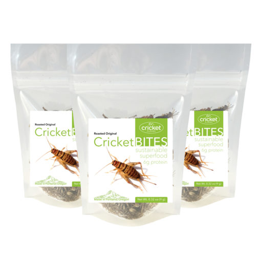 Cricket Bites Roasted Edible Insects