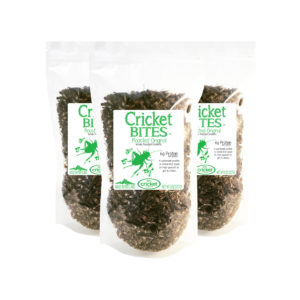 Edible Insect Cricket Bites