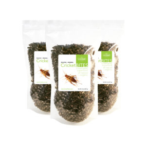 Edible Insect Cricket Protein Roasted