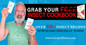 Edible Insect Recipes