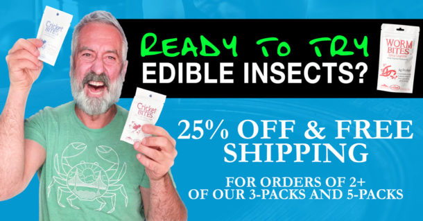 Roasted Crickets Eat Bugs